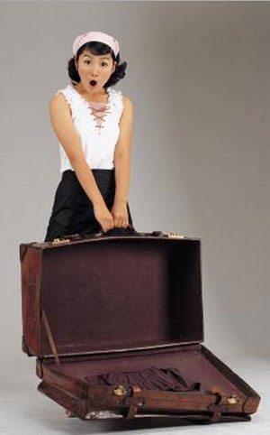 luggage-1102
